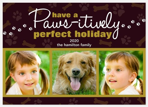 Paws-itively Perfectly Holiday Photo Cards