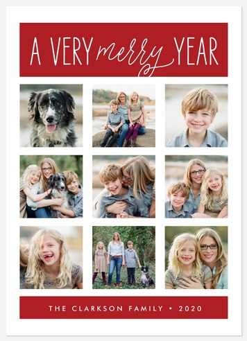 Delightful Year  Holiday Photo Cards