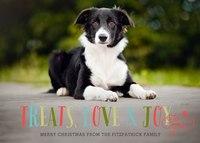 Treats, Love & Joy