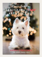 Dog Christmas Cards.Dog Christmas Cards Cat Christmas Cards Simply To Impress