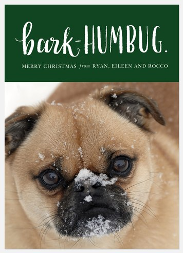 Bark-Humbug