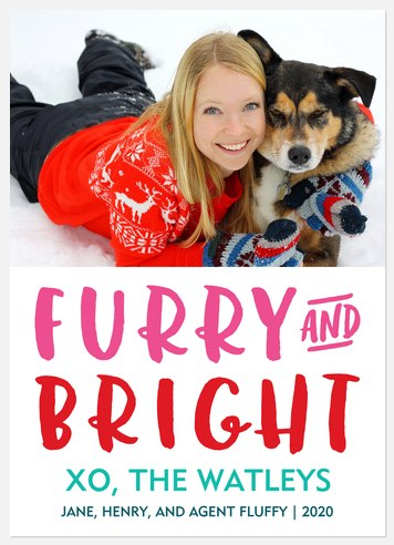 Furry & Bright Holiday Photo Cards