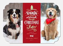 Barkin' Christmas - Pet Christmas Cards