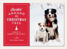 Dog Christmas Cards Simply To Impress
