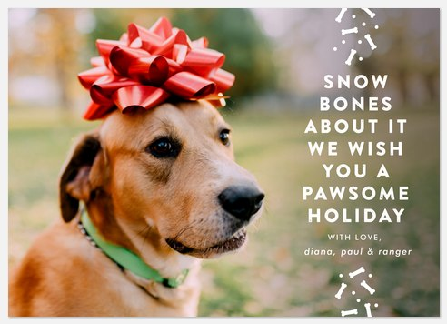 Snow Bones Holiday Photo Cards