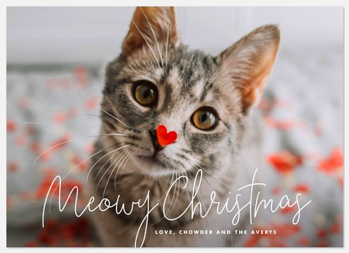 Simply Meowy Holiday Photo Cards