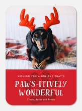 Pawsitively Wonderful
