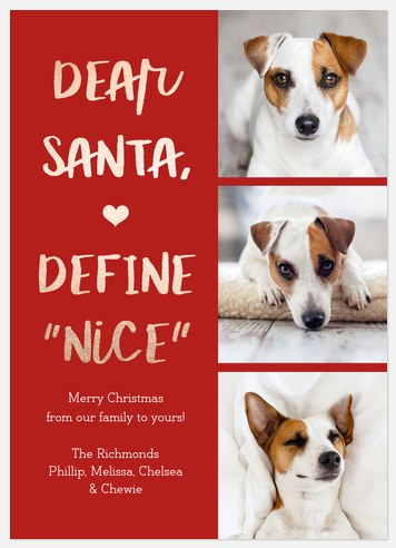 Define Nice Holiday Photo Cards
