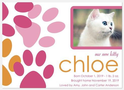Kitty Paws 2 - New Kitten Announcements