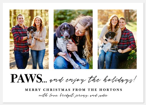 Time to Paws Holiday Photo Cards